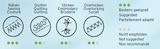 SeraCYCLE 100% gerecycled polyester universeel naaigaren geschikt voor